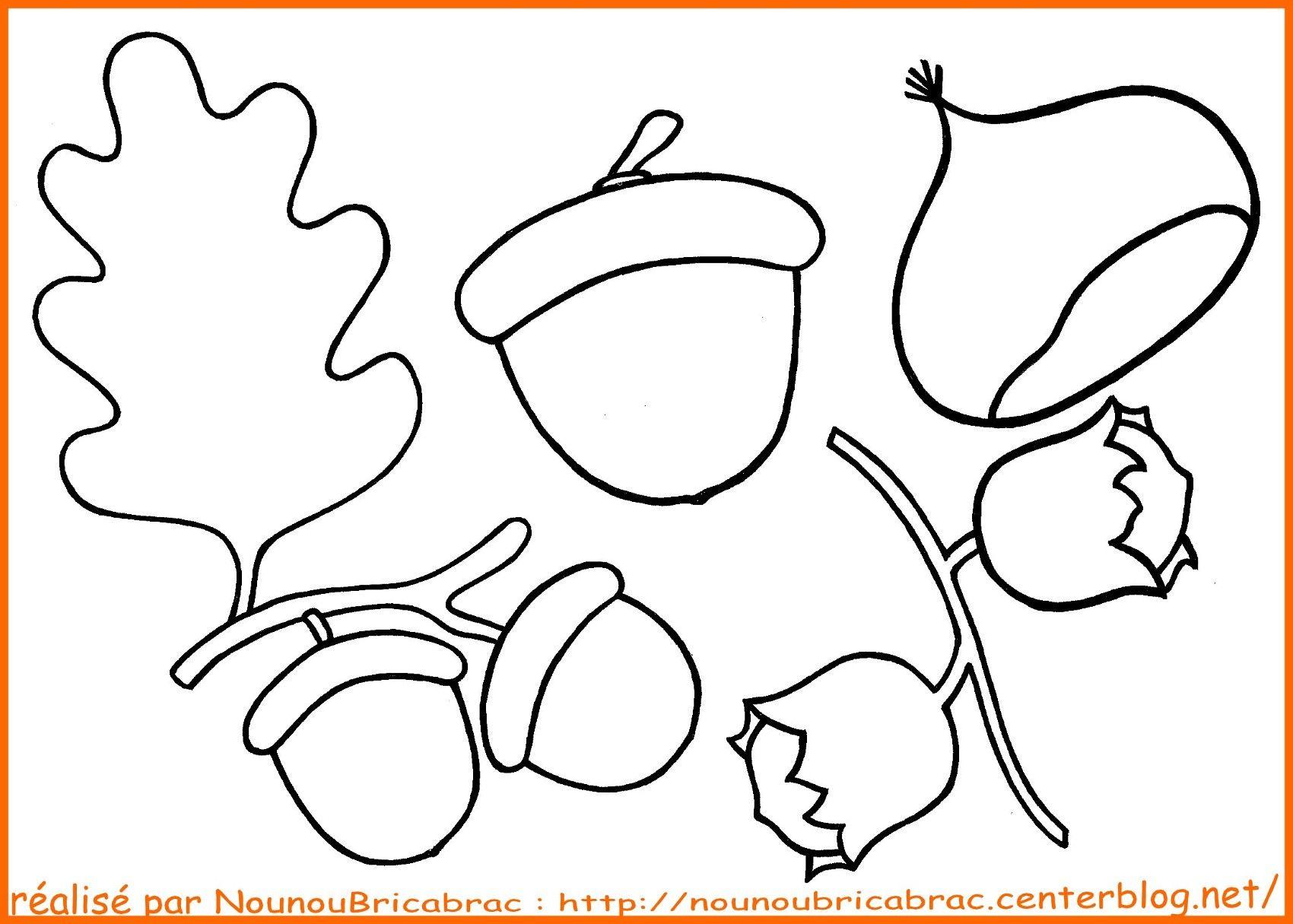 Coloriage Marron Fruit.Glands Chataigne Et Noisettes A Colorier Coloriage