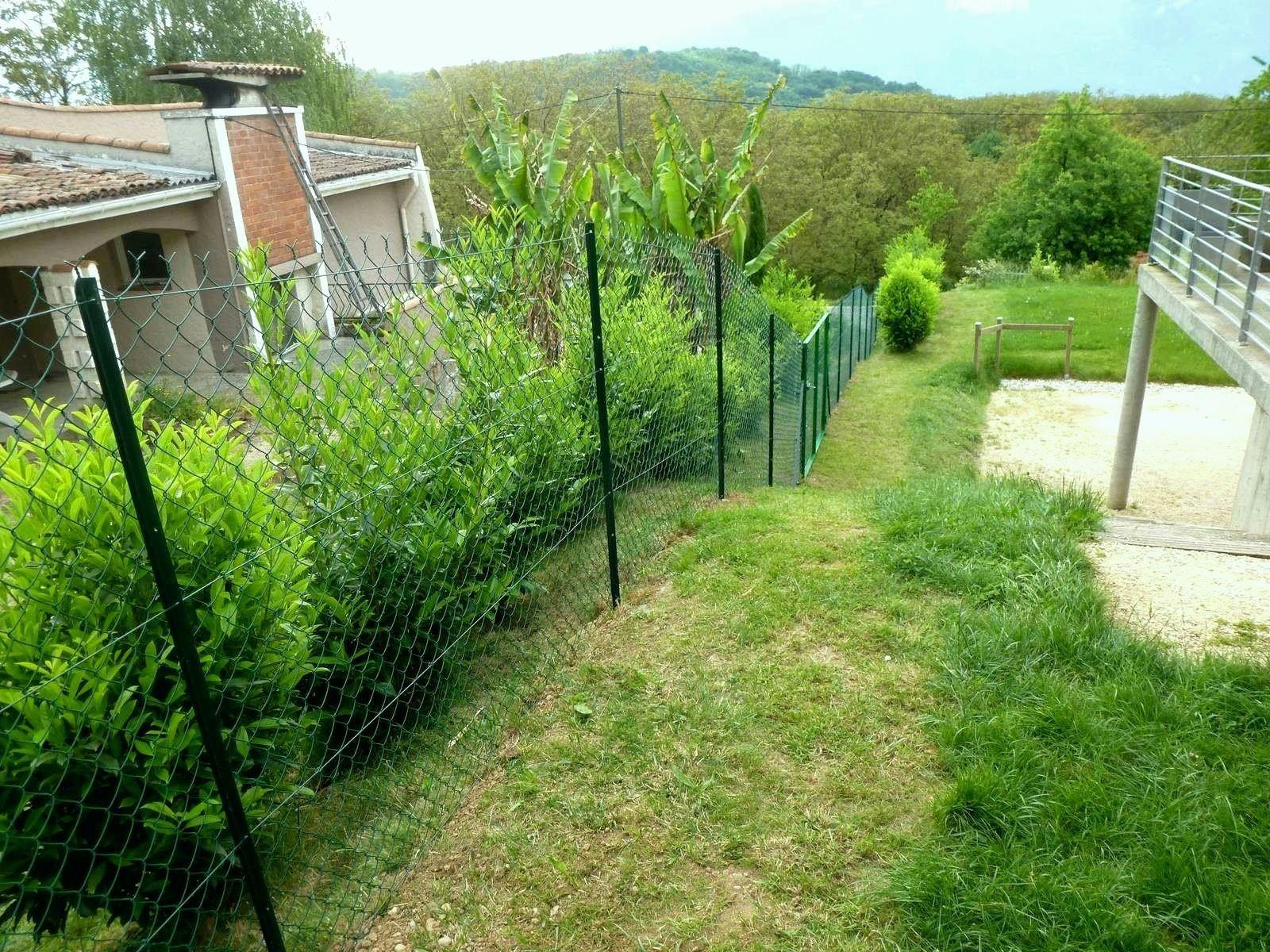 30++ Cacher vis a vis jardin en hauteur inspirations