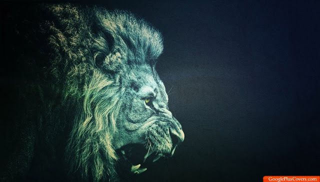 Roaring Lion With Images Cartoon Wallpaper Hd Lion Wallpaper
