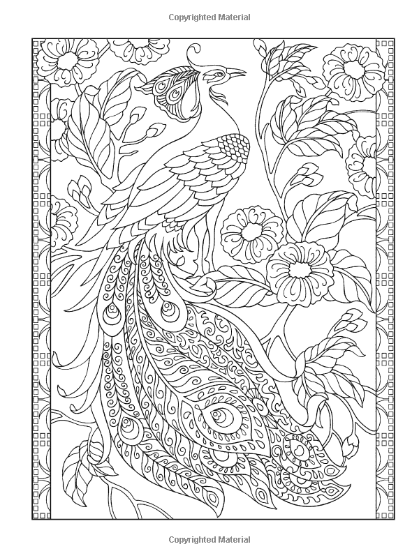 Creative Haven Peacock Designs Coloring Book Artwork By Marty Noble