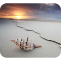 App name: Seashell Photography. Price: free. Category: . Updated: February 28, 2013. Current Version: 2013.1. Requires Android: 2.2 and up. Size: 4.30 MB. Content Rating: Low Maturity.  Installs: 5,000 - 10,000. Seller: . Description: * Photo gallery of high qualit  y Seashell Photography  uot; images .* Play Seas  hell Photography free Pu  zzles Game.* Set   .