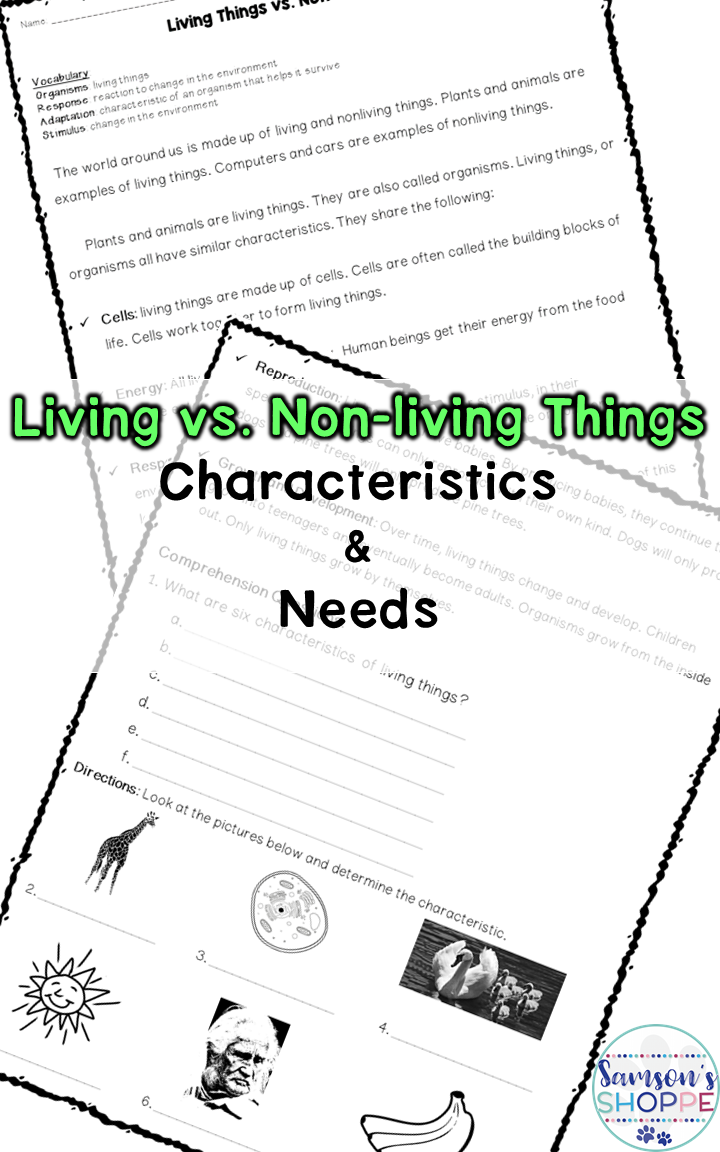 Worksheets Living Vs Nonliving Worksheet living vs nonliving things nonfiction guided reading article and activity