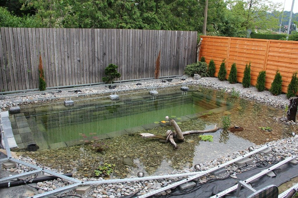 This one reddit user decided to build a swimming pond for Garden pond reddit
