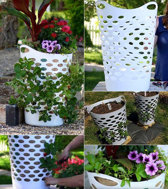 erdbeeren pflanzen in diy containers so geht s pflanzen garten erdbeeren pflanzen und. Black Bedroom Furniture Sets. Home Design Ideas