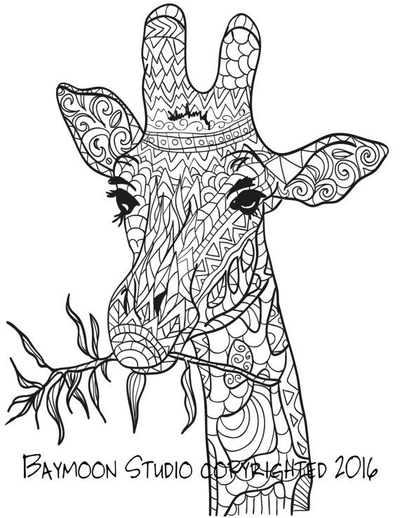 Giraffe Eating Coloring Page Printable Coloring Pages Adult