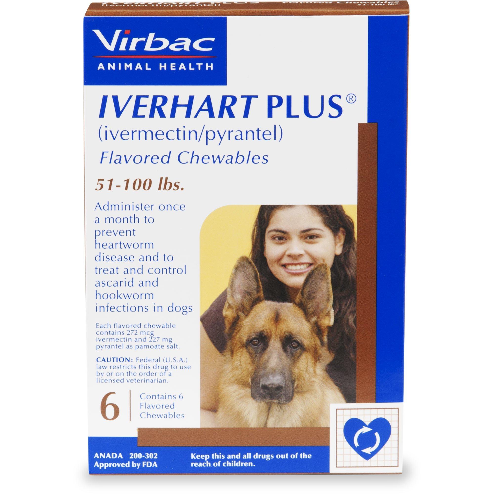Iverhart Plus Chewable Tablets For Dogs 51 100 Lbs 6 Pack Medical Prescription Animal Medicine Pet Health