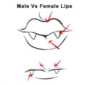 How To Draw A Vampire By Dawn Anime Lips Vampire Drawings