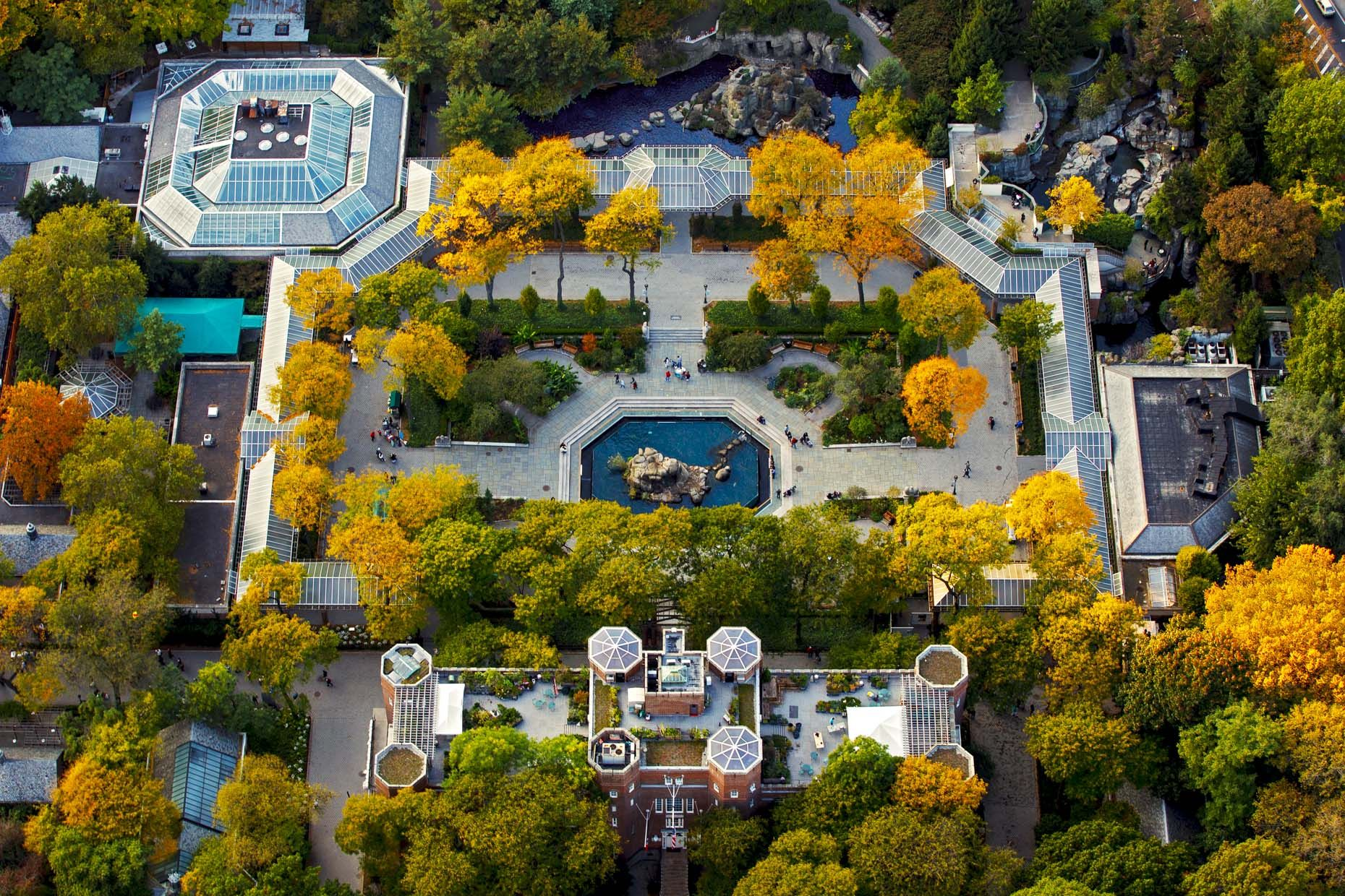 Central Park New York Zoo Pictures Wallpaper