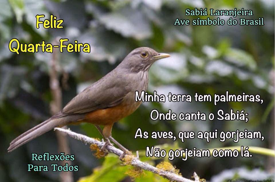 Feliz Sabado Bom Dia Clique Na Imagem E Encontre Lindas: Canção Do Exílio (Gonçalves Dias)
