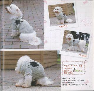MOLDES VARIADOS E SELECIONADOS: roupa para cachorro