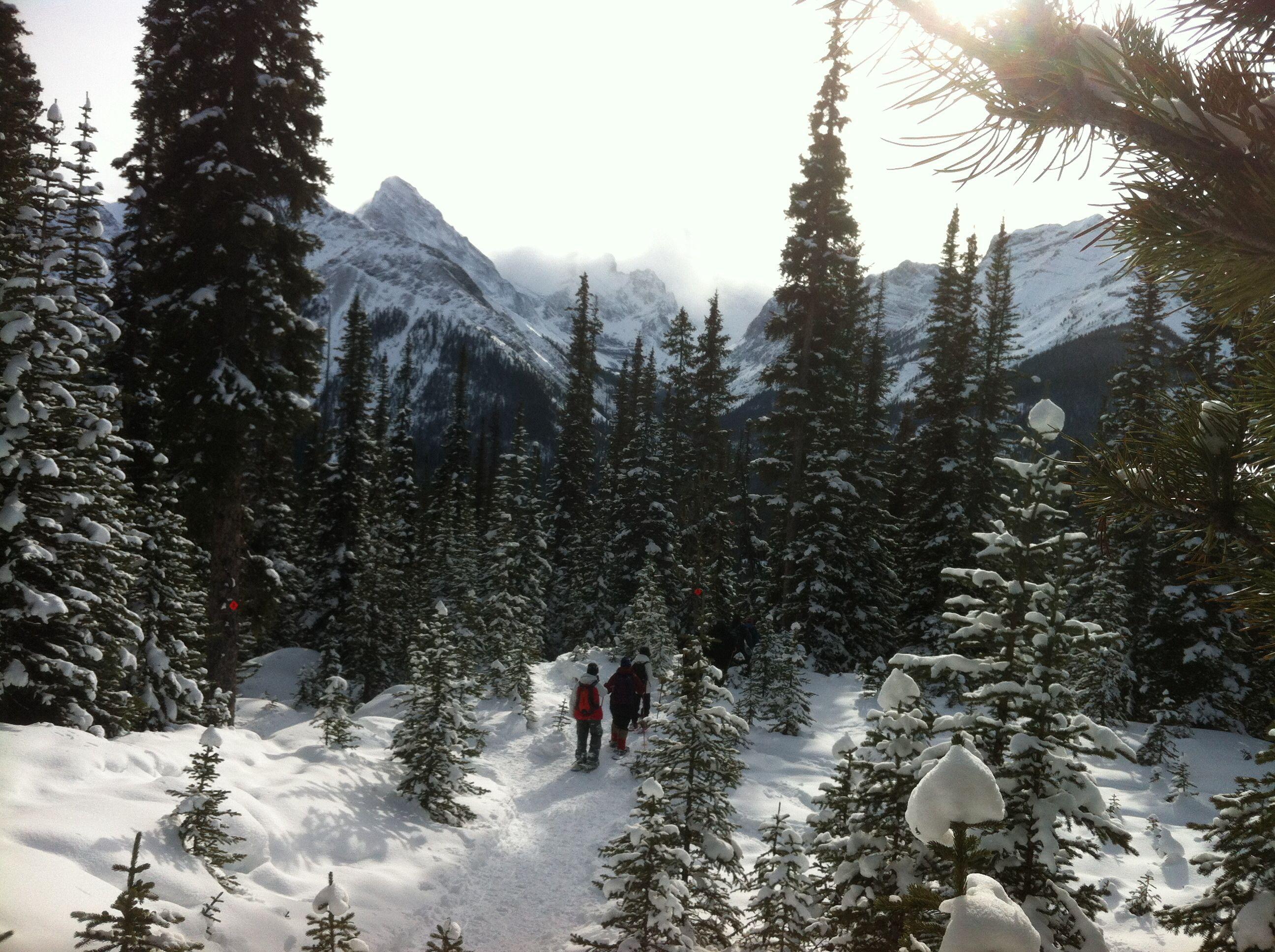 Snowshoeing at Chester Lake/ Kananaskis Country