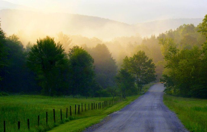 Vermont Quot Summer Morning Fog Quot By Joanne Delabruere