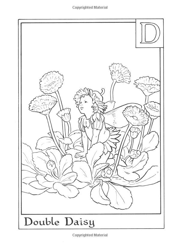 Cicely Mary Barker Coloring Pages | Fairies Alphabet Colouring Book ...