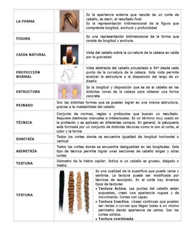 Tecnicas de corte de cabello teoria