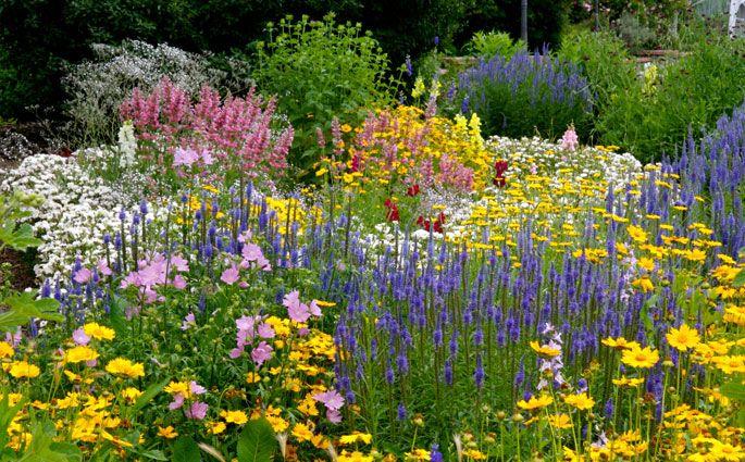 Flower Garden Ideas Colorado hudson gardens botanical garden denver colorado   in the garden