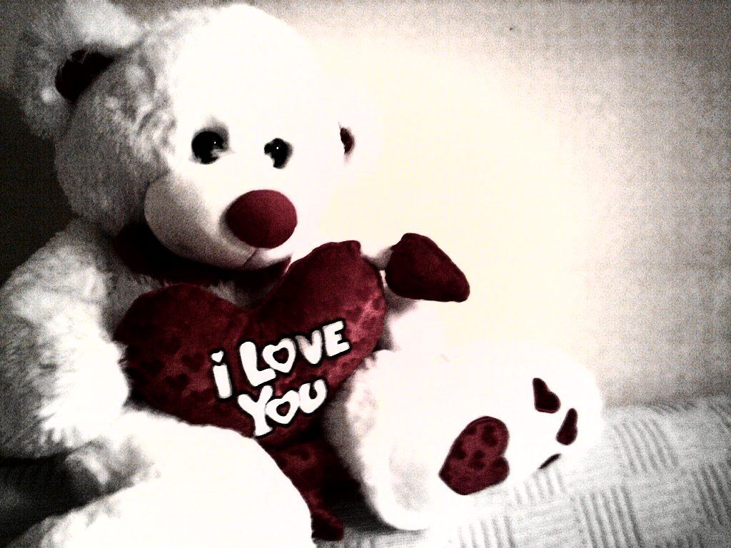wallpaper of i love you teddy bears - wallpaper of i love you teddy
