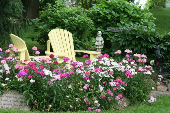 tranquil seating area