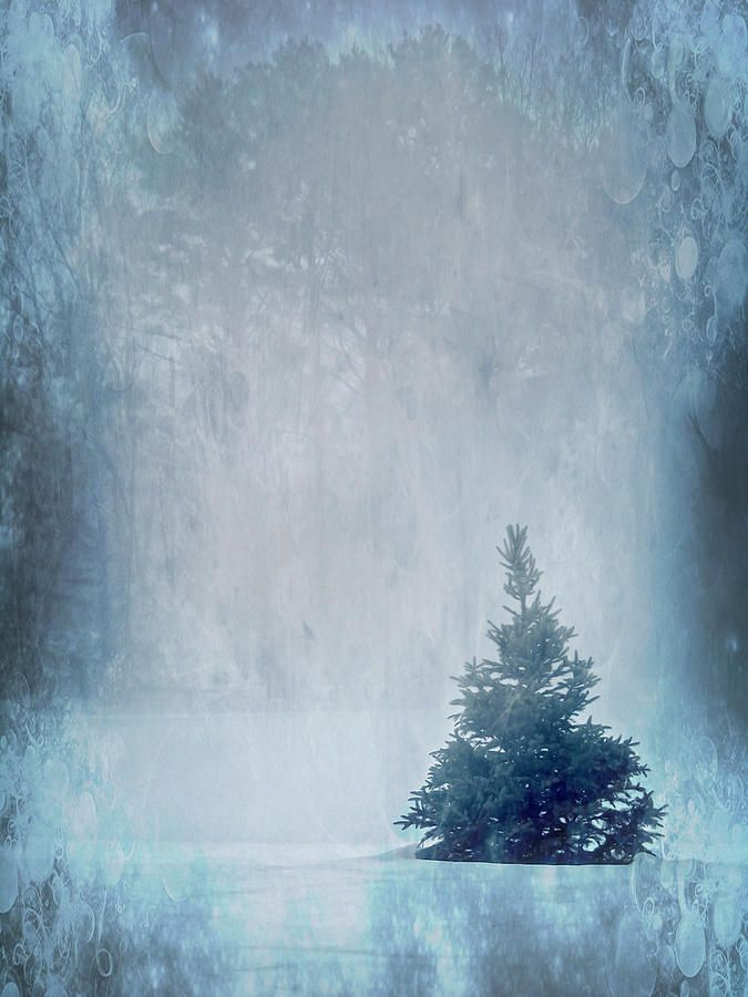 Smiths Christmas Hours 2021 A Blue Christmas By Melissa Smith In 2021 America Art Art Fine Art
