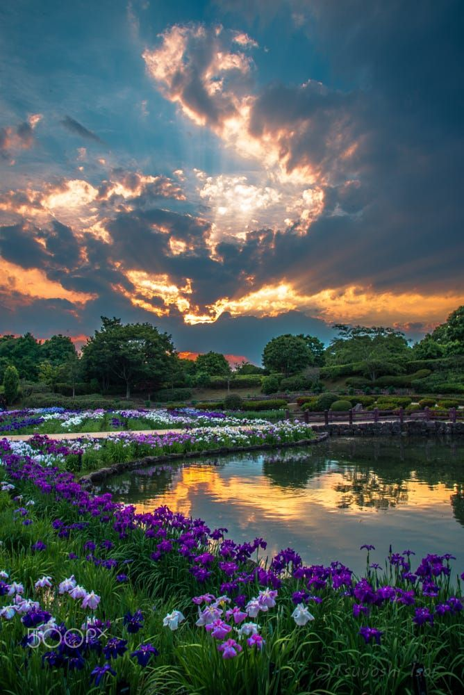 In The Usual Park By Tsuyoshi Isoi Sky Landscape Lake Sunset Water Nature Tree Summer Beautif Nature Scenes Nature Pictures Beautiful Nature
