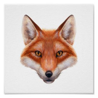 Red Fox Drawing Google Search Red Fox Fox Face Fox Drawing
