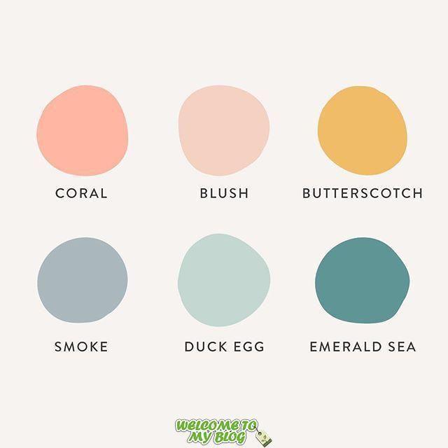 Bear Fruit Design En Instagram Una Paleta De Colores Fresca Y Femenina Para Un Nuevo Client Disenos De Unas Paletas De Colores Cálidos Colores De Interiores