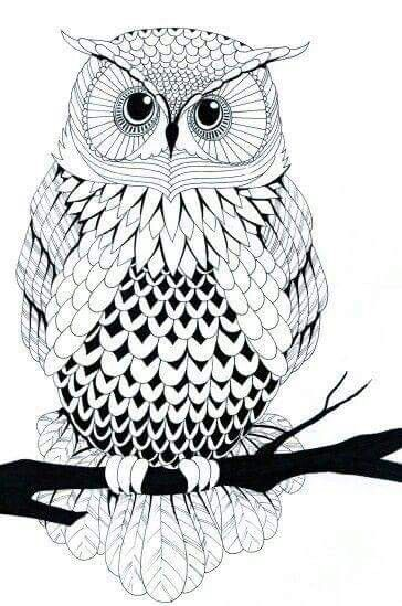 Owl Line Art A Little More Intricate Than I Was Looking For To Embroider On Shirt Want Make But It Would Be Nice