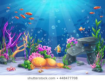 Más De 1 000 Imágenes Gratis De Fondos Marinos Y Mar Pixabay Fondo Del Mar Dibujo Fondo Marino Dibujo Fondo De Pantalla De Peces