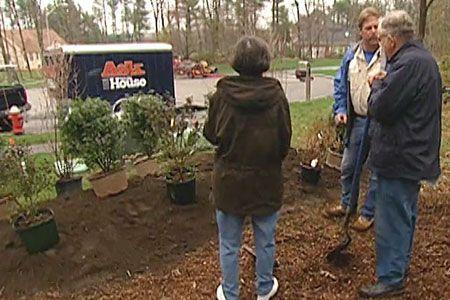 Wie man große Utility-Boxen mit Bepflanzung aussortiert – 2019 #sichtschutzpflanzen