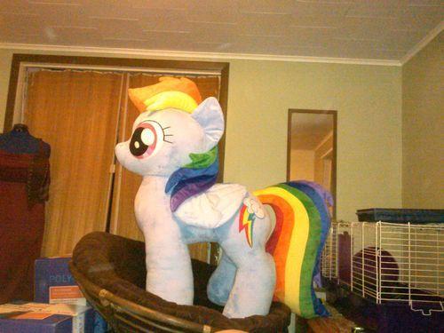 Giant Life Sized Rainbow Dash Plushie Over 4 Feet Tall MY Little Pony  Fanart  5644f3b5ef6c