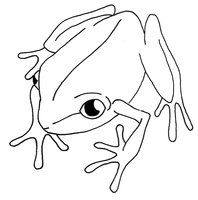 Coqui Drawing Google Search Line Drawing Easy Animal Drawings