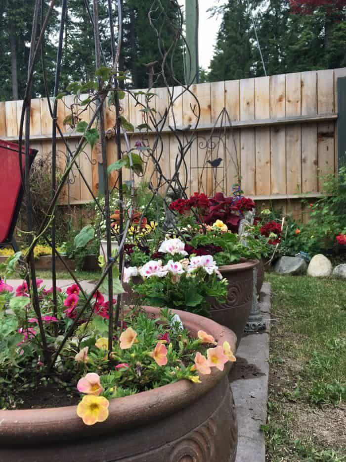 Small Backyard Garden Ideas & Tips | Small backyard ...
