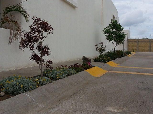 Jardineras arriates canteros en las aceras veredas - Plantas para arriates ...