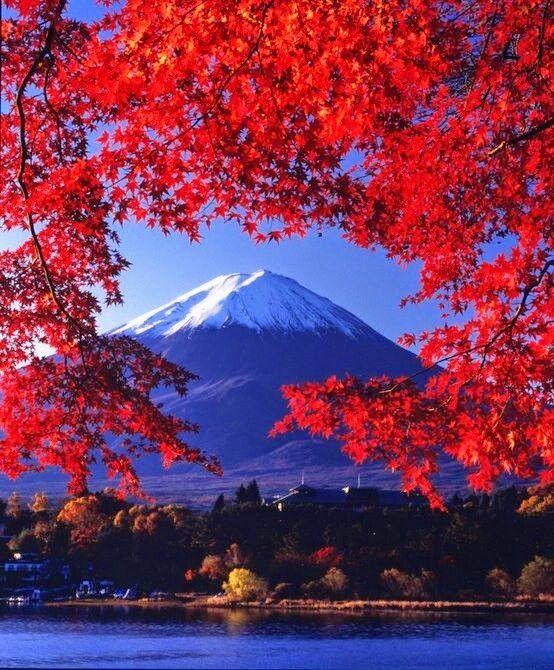 Mt Fuji Japan.  Nature photography.
