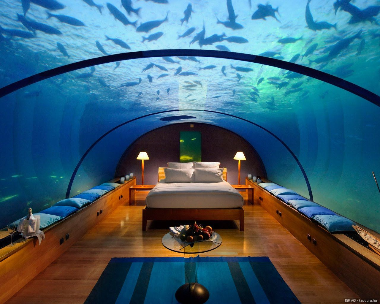 Fish aquarium bed frame - Fish Tank Bedroom Dwight Designs