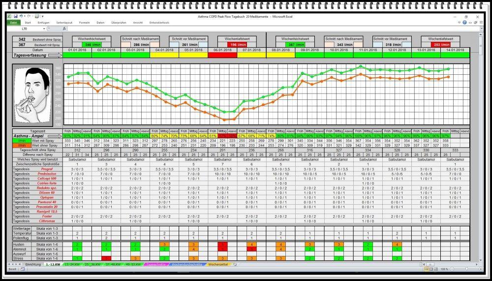 Asthma Tagebuch Software Peak Flow Meter Protokoll Aufzeichnung Und  Dokumentation Von Werte. COPD Tagebuch Monitor
