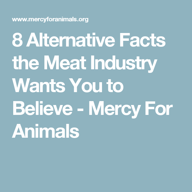 8 Alternative Facts the Meat Industry Wants You to Believe - Mercy For Animals