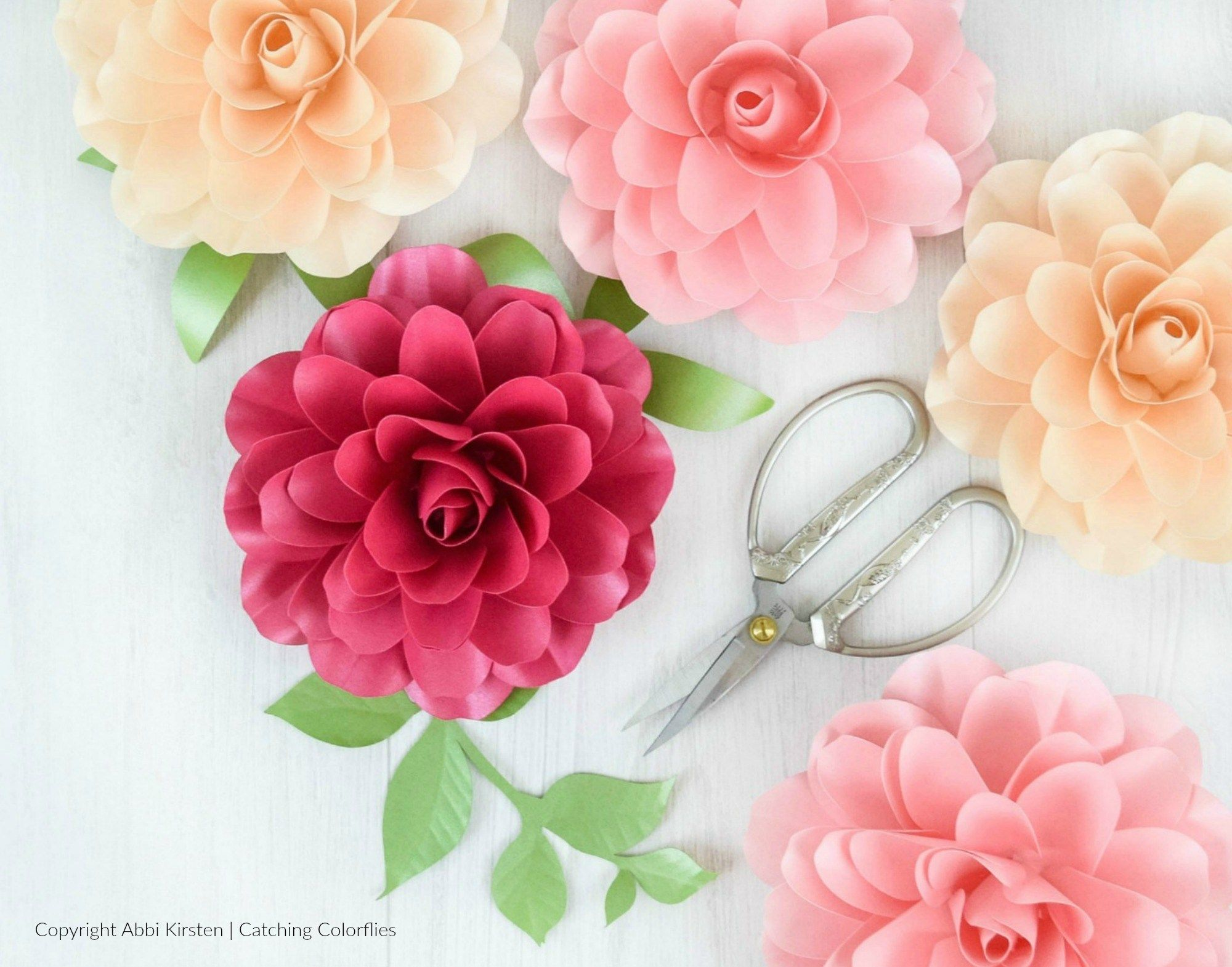 How To Make Small Paper Roses Camellia Rose Template Tutorial Paper Rose Template Paper Roses Paper Flower Template