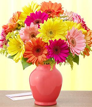 Gerbera Daisies Daisy Bouquet Wedding Daisy Bouquet Gerber Daisy Wedding