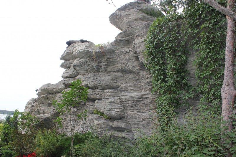 Искусственный камень | Абиес-ландшафт