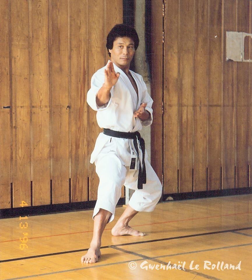 pin by wendy on martial arts kyokushin karate martial arts workout best martial arts