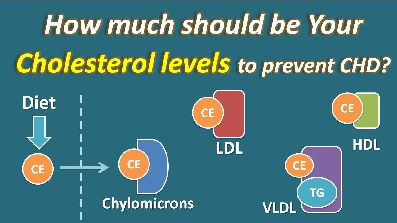cholesterol what level is high risk