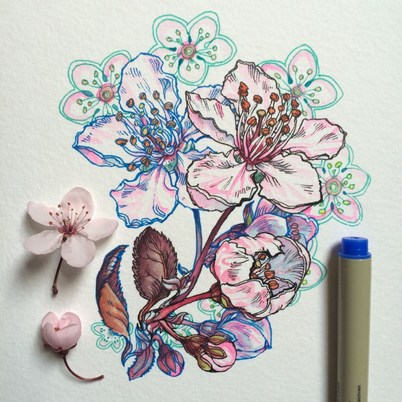 Noel Badges Pugh Floral Art Flower Sketches