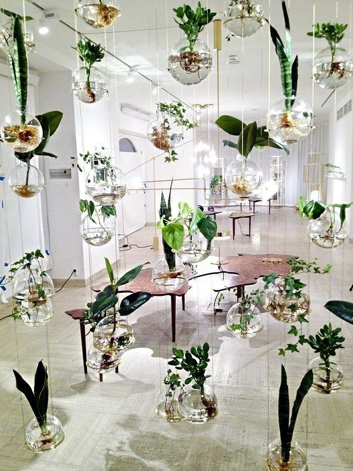 le potager d 39 int rieur en 50 belles id es plants gardens and inside plants. Black Bedroom Furniture Sets. Home Design Ideas