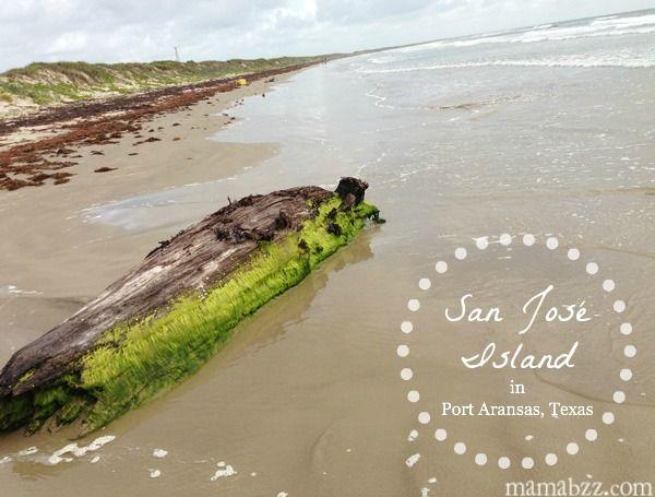 Explore San Jose Island In Port Aransas Texas Adventures Of Mel Port Aransas Port Aransas Texas Port Aransas Beach