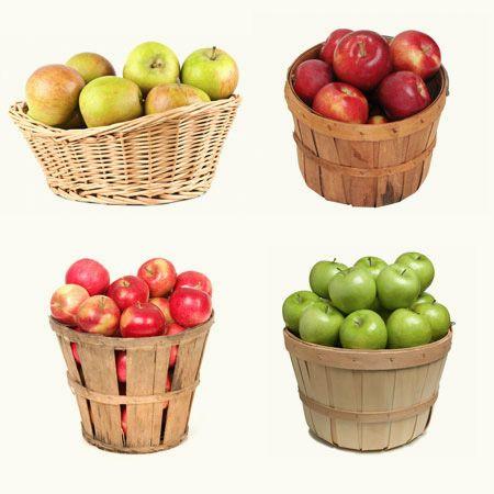 4 In 1 Apple Tree Apple Tree Fast Growing Trees Apple Tree Care