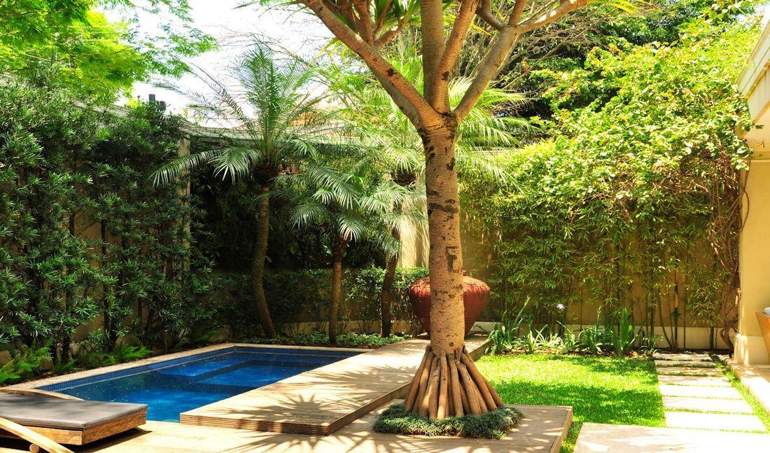 Diseño de exteriores: jardines modernos y tropicales 3