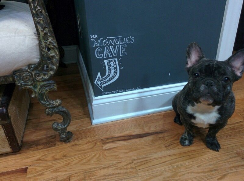 Frenchie Man Cave