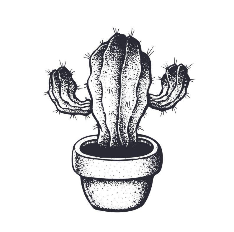 Black And White Cactus Clipart Cactus Clipart Clip Art Cactus Design