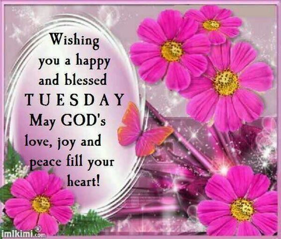 Wishing You A Happy And Blessed Tuesday Tuesday Quotes Good Morning Good Morning Prayer Happy Tuesday Morning