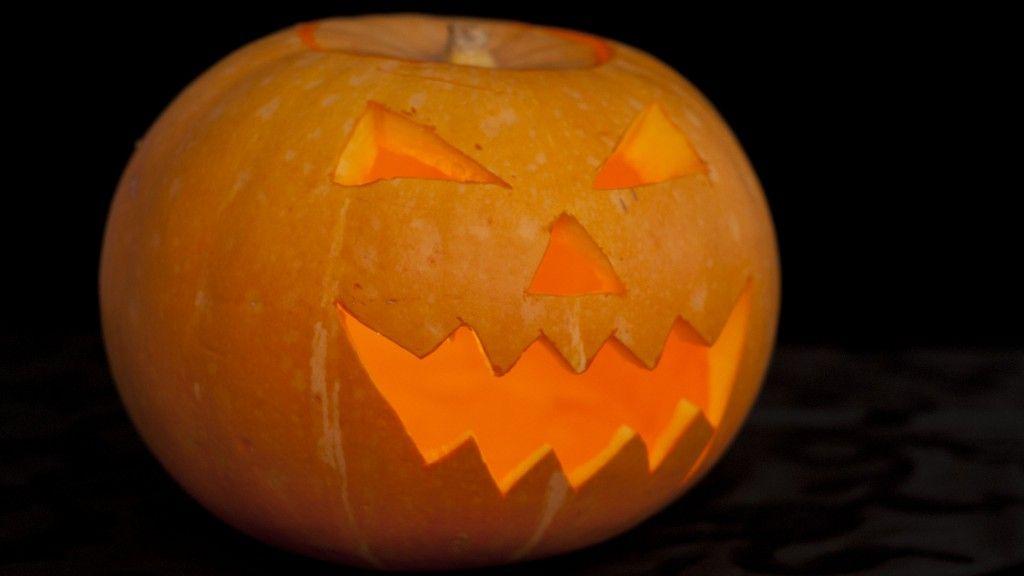 Ein Kürbis darf zu Halloween nicht fehlen! Wir zeigen euch in unserem Video Blog, wir ihr einen schnitzt.